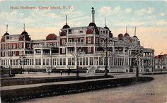 Coney Island, Taj Mahal, Louvre, Building, Travel, Viajes, Buildings, Destinations, Traveling