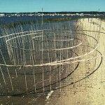 Roy Staab http://floresenelatico.es/esculturas-de-cana-y-agua/3808