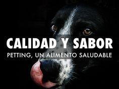 """""""CALIDAD Y SABOR"""" - Petting, alimento de calidad Premium."""
