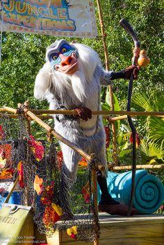 Disney World | Animal Kingdom | Mickey's Jammin' Jungle Parade