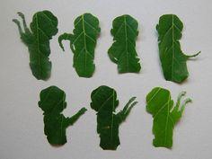 Be the Leaf. The Legend of Korra