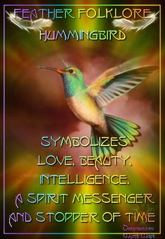 Hummingbird - symbolizes love, beauty, intelligence. A spirit messenger and stopper of time (this is why I have a little one tattooed on me)