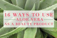 16 Ways to Use Aloe Vera as a Beauty Product