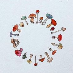 Circle of Toadstools   . . . . . .#instadaily #cute #love #life #sale #instaillustration #illustration #illustrator #mushroom #nature #paint #painting #draw #drawing #sketch #sketching #wildlife #inspired #artists #motivation #inspo #garden #inspiration #toadstool #winter #art #design #etsy #spring