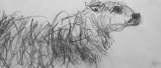 Ewe in Winter I by Jason Gathorne-Hardy