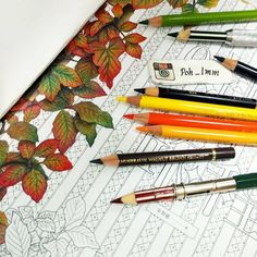 #colouringbook #adultcolouringbook #colouringbookforadults