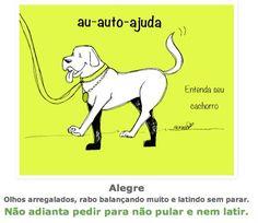 entenda_o_ que_ significa_ as_ posturas_ mais_ comuns_ dos_ cachorros_sossolteiros 7