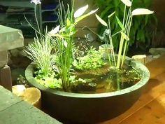 Estanque en miniatura Diy Landscaping, Plants, Patio Pond, Garden, Container Plants, Garden Water Fountains, Water Garden, Zen Garden, Creative Gardening