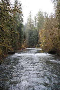 an angler on eagle creek
