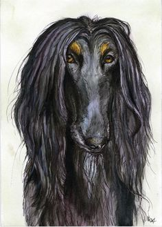 A Little Casanova  Afghan Hound Dog Art Print by AlmostAnAngel66, £15.00