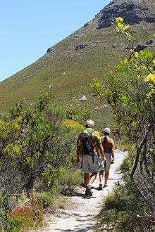 Among the thousands of fascinating plants in a pristine sanctuary in Hermanus is the world's largest carnivorous plant, and a sundew that loves cheese. Fernkloof Nature Reserve is a must visit spot.