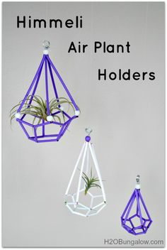 Himmeli Air Plant Holders - West Elm Knockoff for a fraction of the cost! www.H2OBungalow.com