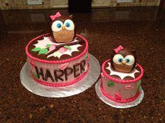 Owl cake and smash cake!