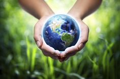 Earth in hands - grass background - environment concept. Free art print of Earth in hands - grass background. World Environment Day, Healthy Environment, Environment Concept, Earth Month, Earth Day, Earth Hour, Grass Background, Spring School, Hand Images