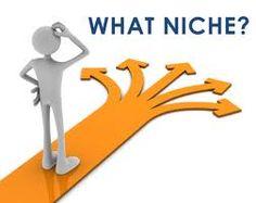 Pemilihan niche atau topik blog