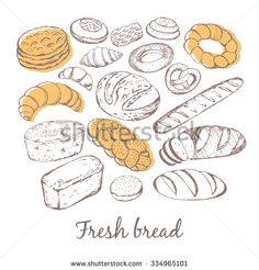 Vector illustration of different breads and pastries. Isolated sketch of bread on the background texture of chalk.