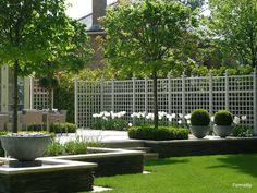 Privacy planting outdoor ideas pinterest pictures for Structural plants for small gardens