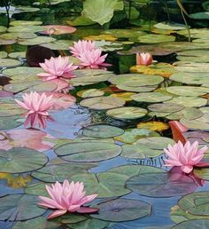 Water Lilies Painting, Lotus Painting, Lily Painting, Watercolor Lotus, Watercolor Landscape, Landscape Paintings, Lotus Flower Art, Lotus Art, Lily Pond