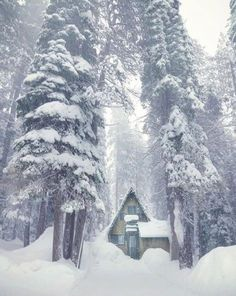 small hut in beautiful winter forest - Winter - Snow Winter Forest, Winter Cabin, Cozy Cabin, Winter Snow, Winter White, Winter Christmas, Winter Schnee, Destinations, Le Shop