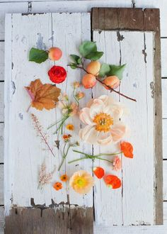 Inspiration Tuesdays: Earthy | THE LOLLY PROJECT.