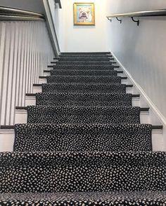 "Helen Davis Interior Design on Instagram: ""Stairway to... @biscuitthebully #helendavisdesign #biscuitsbungalow"" Stairways, Animal Print Rug, Bungalow, Rug Runner, Interior Design, Rugs, Instagram Posts, House, Runners"