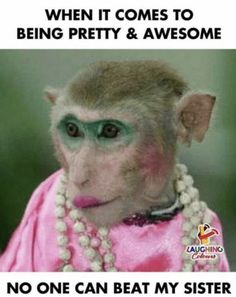 When it comes to being pretty and awesome - no one can beat my sister sister Sibling Memes for Sharing on National Sibling Day Funny Sister Memes, Sister Jokes, Brother Memes, Brother Sister Quotes, Love My Sister, Funny Sister Pictures, Happy Birthday Brother From Sister, Happy Sisters Day, Sister Sayings