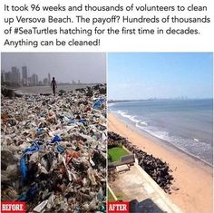 Faith in humanity restored We Are The World, Change The World, In This World, Save Our Earth, Save The Planet, Clear Up, Beach Clean Up, Photos Bff, Beach Photos