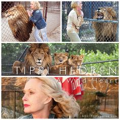 Best known for her roles in Alfred Hitchcock's Marnie and The Birds, Tippi Hedren was well down the runway as a model when she caught the legendary filmmaker's attention in a TV commercial one day. That set her on a path to appear in over 80 films and TV shows. Mother of Melanie Griffith (Something Wild, Working Girl) and grandmother of Dakota Johnson (Fifty Shades of Grey, The Social Network), Hedren's greatest passion is animal rights. #ABILITYMagazine