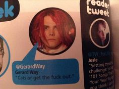 Cats or get the fuck out -Gerard Way