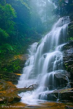 Waterfall : Sylvia Falls, Valley of the Waters, Blue Mountains, Australia