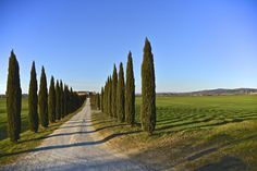 Get lost in, #Tuscan