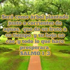 La persona que desde pequeño obedece a Dios, será como árbol plantado junto a corrientes...