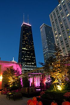 Did You Know The Lynn Sage Cancer Research Foundation Lights Chicago Pink In October? | NMH Blog