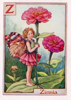 Zinnia Alphabet Letter Z Flower Fairy Vintage by TheOldMapShop, $24.95