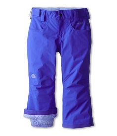 cool The North Face Kids Freedom Insulated Pant (Little Kids/Big Kids) Vibrant Blue
