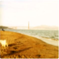 Happy birthday golden gate!