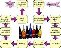 wine making process - Google Search | wine | Pinterest | Wine ...