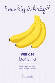 Your+baby+is+now+the+size+of+a+banana.+She+may+have+thin+eyebrows+and+is+sprouting+some+hair+on+her+head.