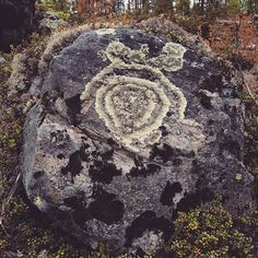 Archaeology Finland (@kmoarchaeology) | You know it's time to go home when you start seeing shapes on boulders. ;-D #bear #lichen #rock #boulder #survey #work #culturalheritage #archaeology #forest #karhu #jäkälä #kivi #lohkare #inventointi #työ #arkeologia #kulttuuriperintö #metsä | Intagme - The Best Instagram Widget