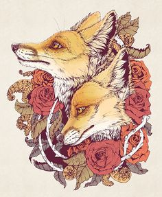 Red Fox Bloom