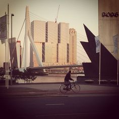 The beauty of Rotterdam #architecture #erasmusbrug #cityscapes