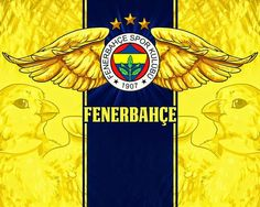 Fenerbahçe HD Masaüstü Resimleri - Best of Wallpapers for Andriod and ios Hd Desktop, Most Beautiful Wallpaper, Great Backgrounds, Cell Phone Covers, 4k Hd, Cursed Child Book, Background Images, Iphone Wallpaper, Prints