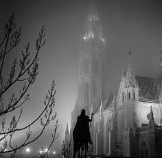 Matthias Church looking over the shoulder of King St. Stephen's statue, taken atop the wall of nearby Fisherman's Bastion. What a beautiful picture!