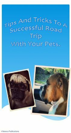 FREE DOWNLOAD:  How to travel with dogs by Christy Aguirre.  ~~~  Amazon prices change frequently so make sure to verify!  Also you can pretty much read on anything - don't need to have a kindle! ~~ http://www.amazon.com/dp/B00AUP8638/ref=cm_sw_r_pi_dp_L2K2rb10DJAQ8