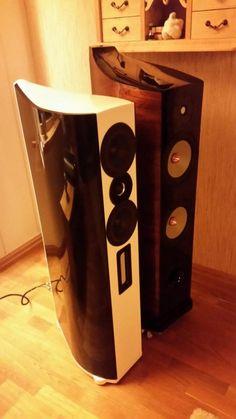 """The WVT Loudspeaker together with the """"MTM"""" Design: W.Sand Built by: Øyvind Overn"""