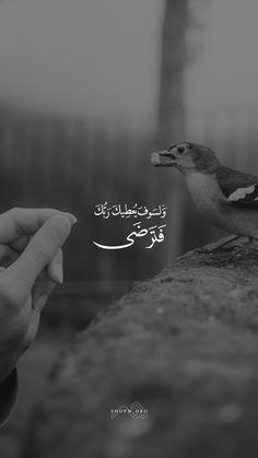 Beautiful Quran Quotes, Quran Quotes Inspirational, Arabic Love Quotes, Quran Wallpaper, Islamic Quotes Wallpaper, Quran Arabic, Islam Quran, Allah Quotes, Muslim Quotes