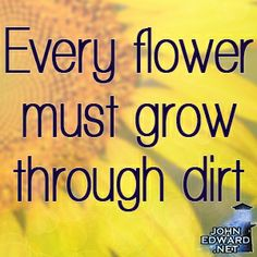 """""""Every flower must grow through dirt."""" #evolvewithjohnedward #psychicmediumje"""