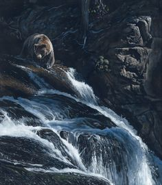 Terry Isaac - Wildlife Art - Bear Painting