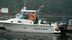 Here is our other fishing boat for our fishing charters. Sport Fishing, Fishing Boats, Fishing Charters, Vancouver Island, To Go