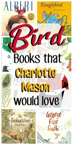 rx online Charlotte Mason inspired books about birds. Living books about birds for kids! H… Charlotte Mason inspired books about birds. Living books about birds for kids! Homeschool Books, Homeschool Curriculum, Homeschooling Statistics, Montessori Books, Books For Boys, Childrens Books, Funny Bird, Birds For Kids, Bird Book
